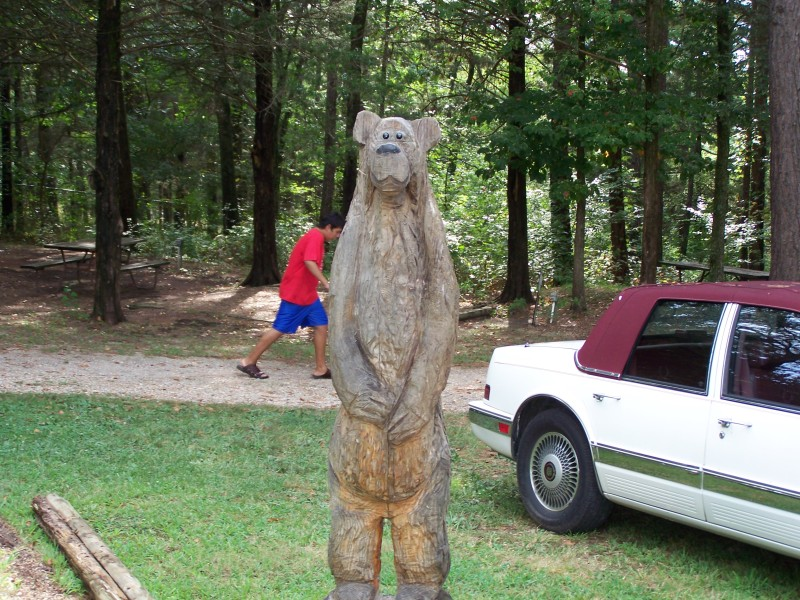 Watch Out for Bears in the Campground.